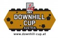 "<p><a href=""http://nyx.at/oervcup/news-pid511"">www.downhill-cup.at</a></p>"